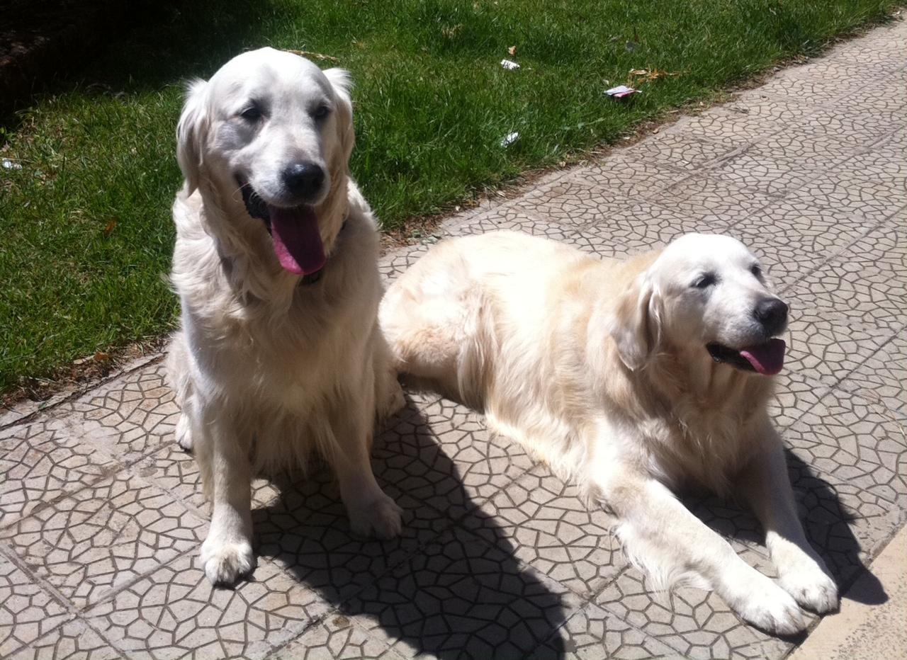Arturo e figlio