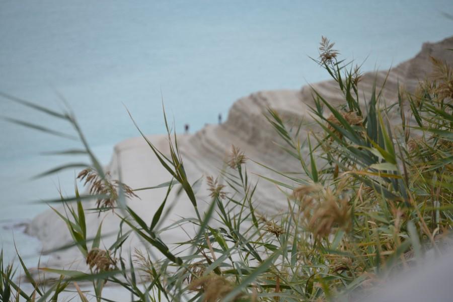 Bianco di Sicilia