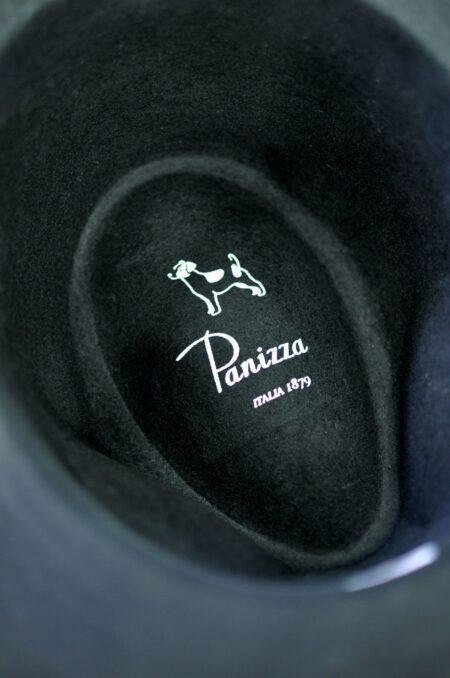 Panizza1879